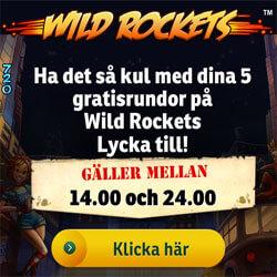 5 free spins Wild Rockets den 30 november
