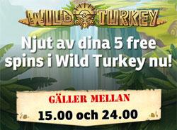 Wild Turkey Mr Green