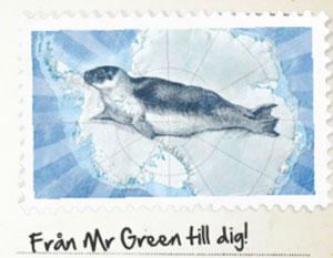 Mr Green Antarctic