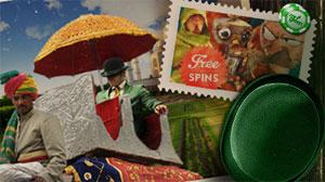 Mr Green Indisk festival