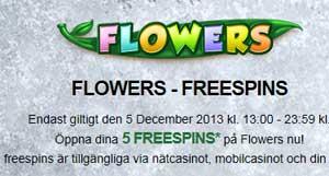 Mr Green Flowers