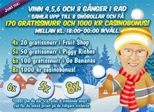 Snöbollskrig med Arne