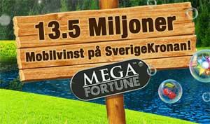 13.5 miljoner vinst på SverigeKronan