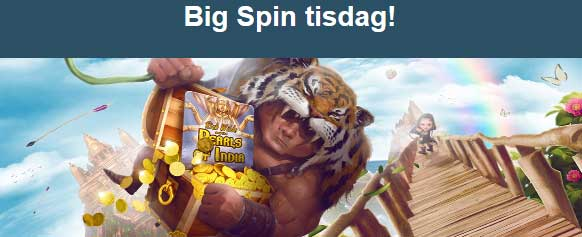 Tigris boss