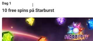 Dag 1 - Starburst