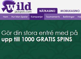 wildjackpots casino bonus