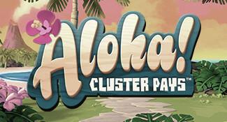 aloha 24hbet casino