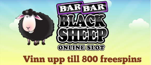 paf casino bar bar black sheep