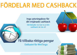 wintingo casino cashpay