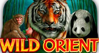 frank casino wild orient