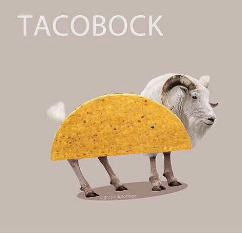 Kristoffer tacobock